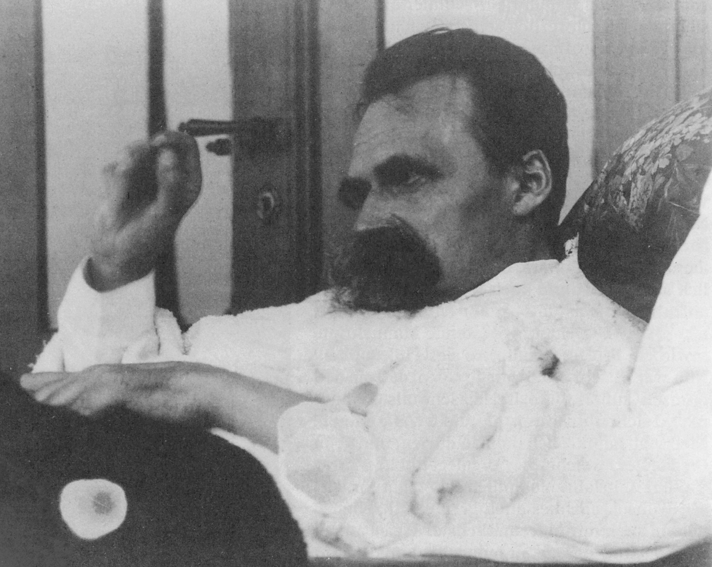 Friedrich Nietzsche - 1899 (08).jpg